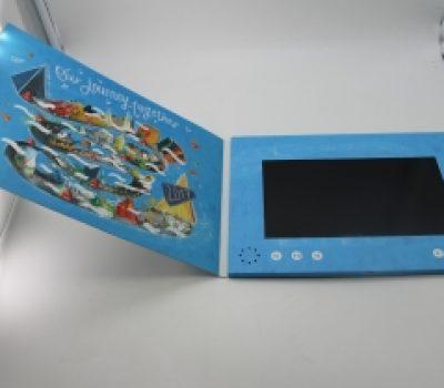 4.3-Inch Blue Video Brochure
